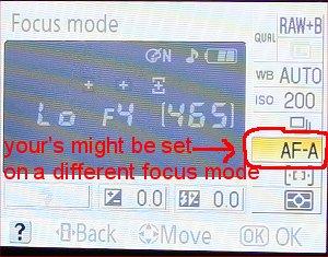 focus setting on digital SLR camera
