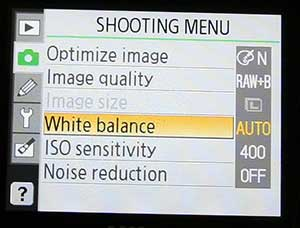 example of Nikon D40 shooting menu