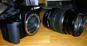 What does SLR digital camera mean