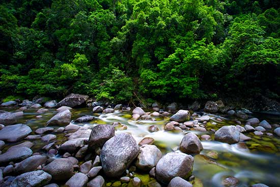 How to photograph waterfalls and streams - forest stream photo