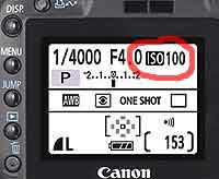 ISO on camera LCD screen