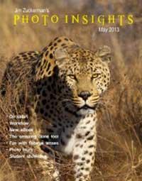 Photo Insights