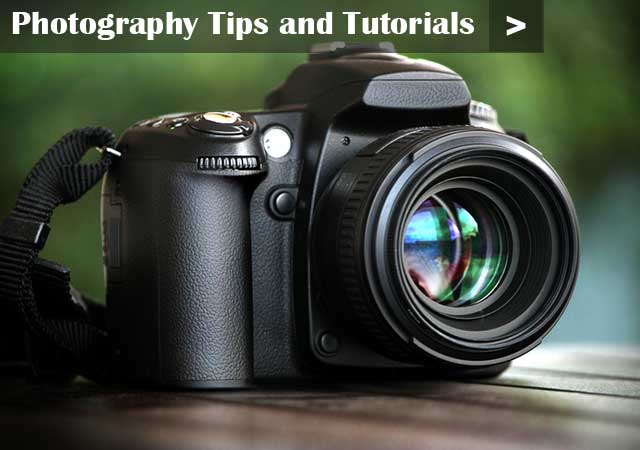 more photography tips and tutorials