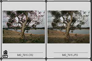 raw image format example